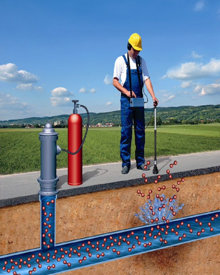 Pipeline Asset Surveillance and Leak Detection
